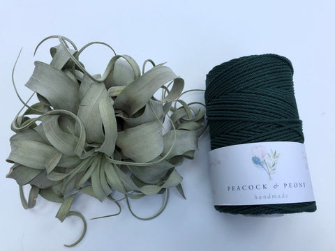 Dark green, 2.5mm, 3-ply twisted rope - recycled cotton