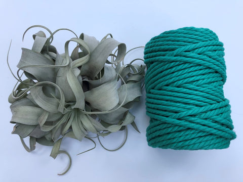 Forest Green, 6mm, 3-ply twisted rope - recycled cotton