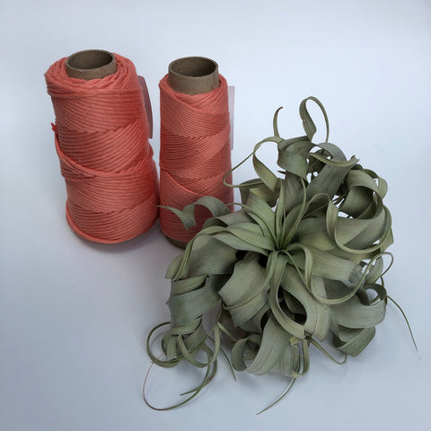 Stringrope - 4 mm - Salmon - 100% Organic Combed Cotton (Spanish line)