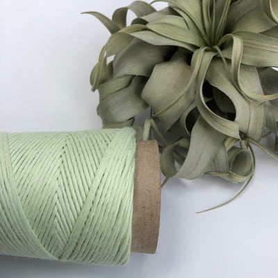 Stringrope - 2 mm - Soft Green - 100% Organic Combed Cotton (Spanish line)