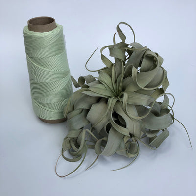 Stringrope - 4 mm - Soft green- 100% Organic Combed Cotton (Spanish line)