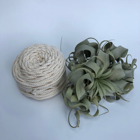 Cotton Air - Crudo - 3mm recycled braided cotton rope (Spanish Line)