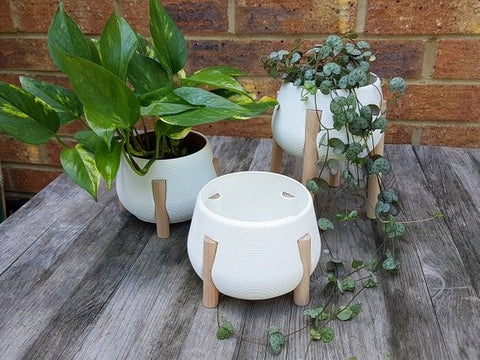 3D printed planters - white with bleech legs - 2 sizes