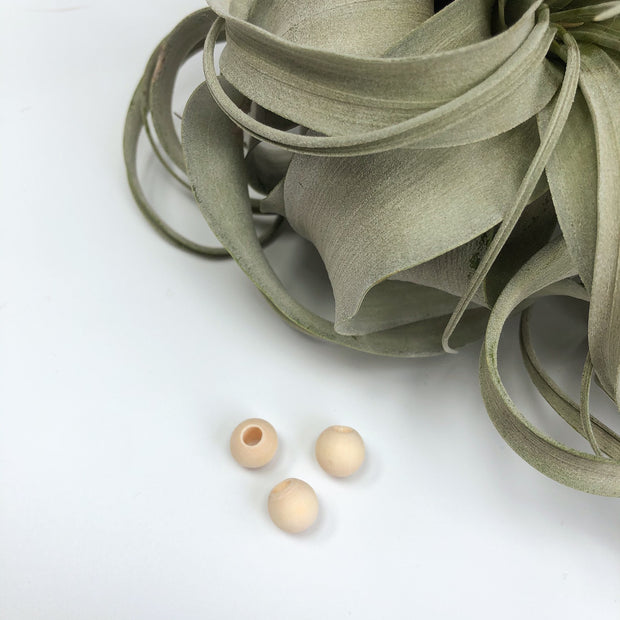 Blanc wooden beads - not vernished, with big hole. 4 sizes.