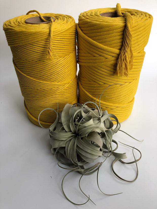 Lemon, 8 mm, 130 plies supersoft single twisted cotton stringrope - recycled cotton