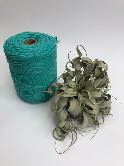 Premium stringrope 5 mm - Turquoise - recycled material (Spanish line)