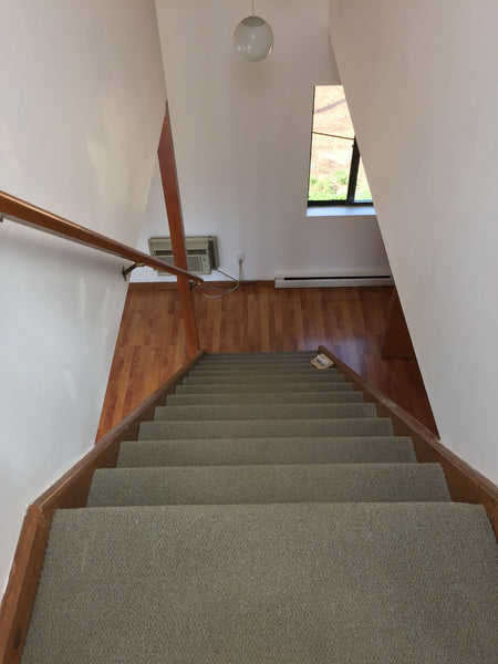 Carpeted steps leading to first floor of home before remodel