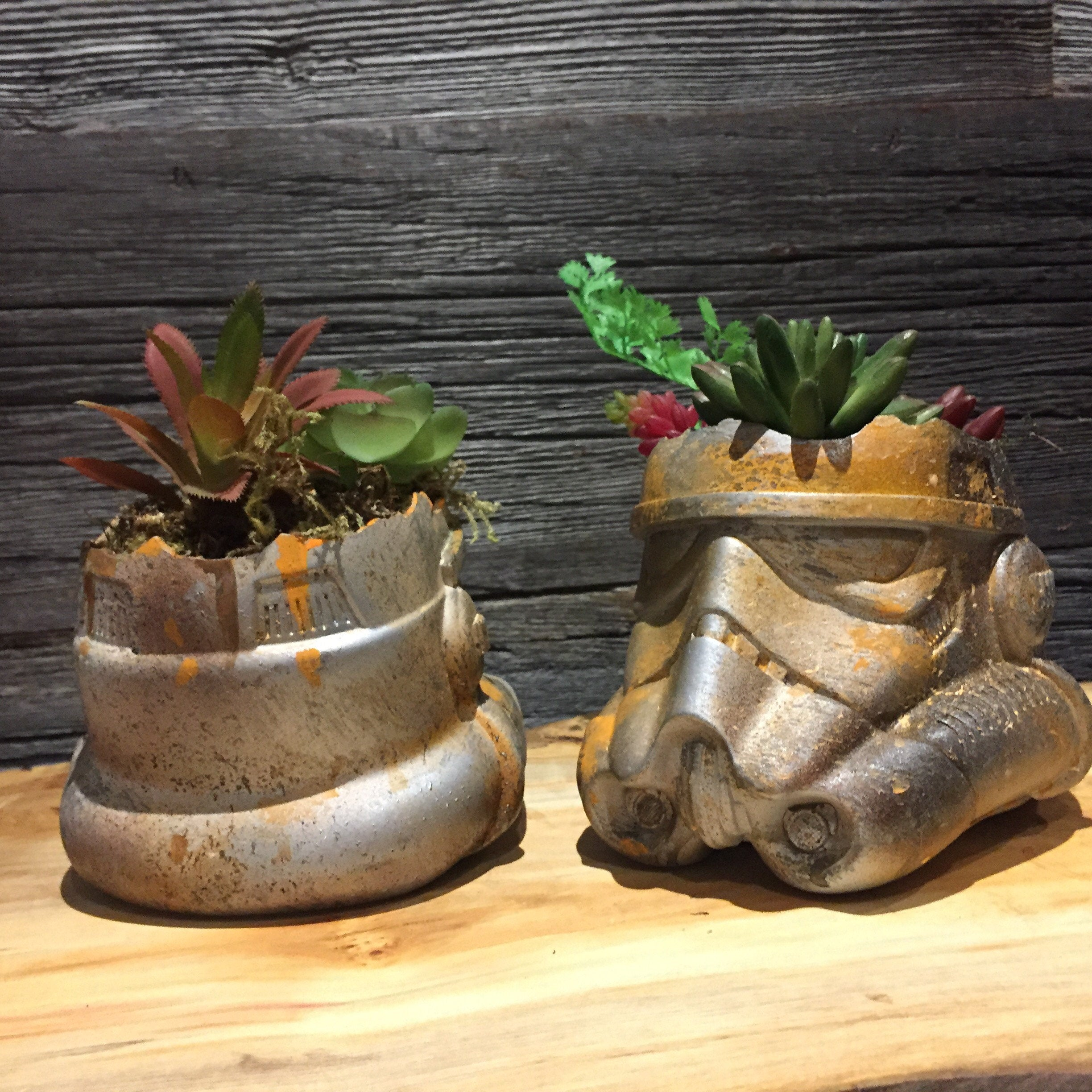 Rusted Stormtroooper Helmet Planter succulents air plants  terrarium decor