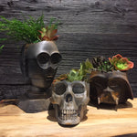 Rusted weathered Skull Planter succulents air plants  terrarium decor