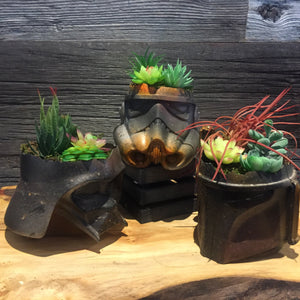 Helmet Planter Lot of Three Planters succulents air plants  terrarium decor