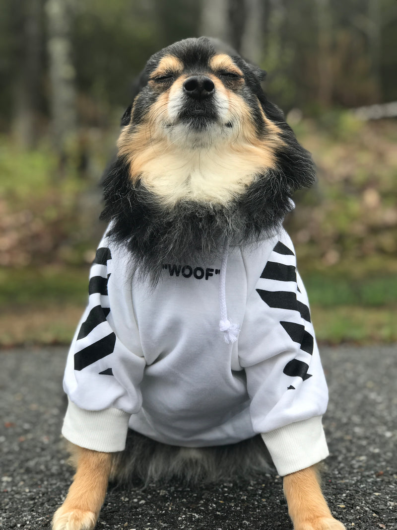 Woof! & Pupreme hoodie by SPARK PAWS