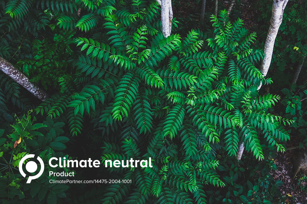 Green plant in the rainforest with Climate Neutral text on the bottom left