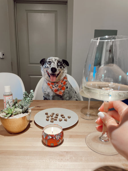 doggy date night