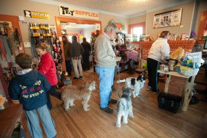 Patton Avenue Pet Company Events