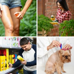 12-ways-to -eliminate- synthetic-chemicals