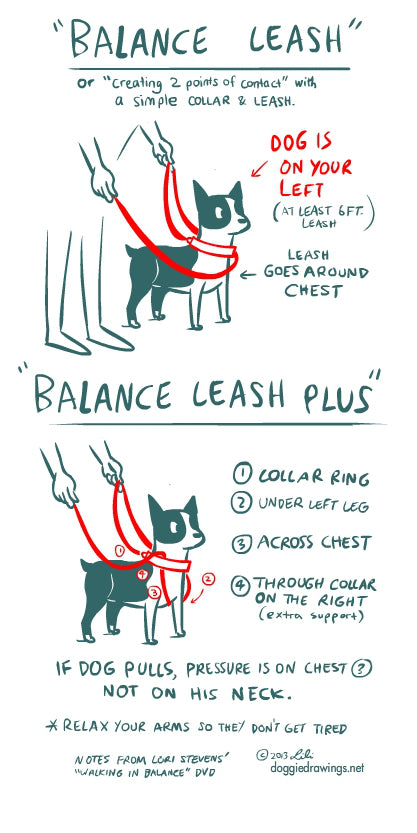 T-Touch Balance Leash