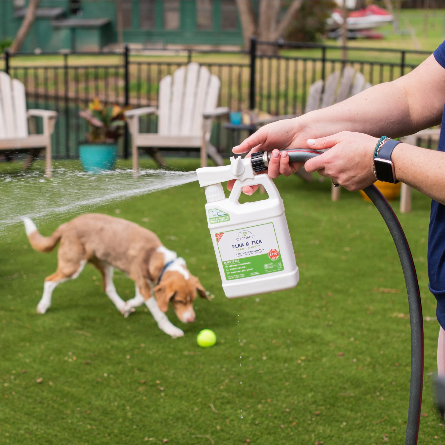 Ready-to-Use Flea & Tick Spray for Yard + Garden - In Use