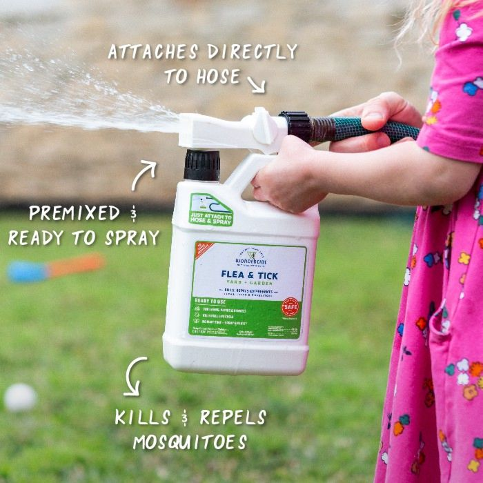 Ready-to-Use Outdoor Mosquito Spray- In Use