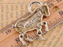 Load image into Gallery viewer, Multicoloured Accented D Buck Pin Brooch