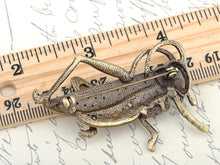 Load image into Gallery viewer, Antique Red Grasshopper Cricket Insect Brooch Pin