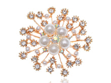 Load image into Gallery viewer, Royal Pearl White Accented Brooch
