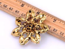 Load image into Gallery viewer, Seed Shaped Color Able Design Jewelry Brooch Pin
