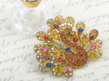 Load image into Gallery viewer, Cartoon Peacock Duck Bird Rose Pink Color Novelty Brooch Pin