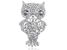 Load image into Gallery viewer, Shine Happy Owl Animal Brooch Pin