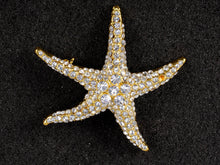 Load image into Gallery viewer, Colored Sea Starfish Brooch Pin