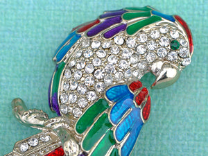 Colorful Parrot Bird Brooch Pin Stud Earrings Set