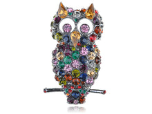 Load image into Gallery viewer, Dark Multicolored Colorful Cat Ears Owl Bird Brooch Pin