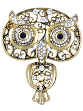 Load image into Gallery viewer, Antique Indian Embellish Owl Bug Eyes Pin Brooch