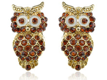 Load image into Gallery viewer, Beautiful Ruby Topaz Big Eyed Owl Stud Earrings