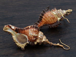 Sandy Tan Brown Colored Seashell Sea Shell Conch Design Drop Earrings