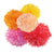 Pomadore's Tutti Frutti tissue paper pom set comes in five seasonal shades to brighten any birthday party.