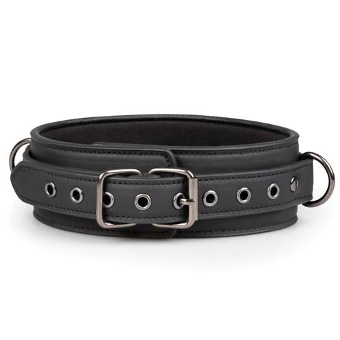 Faux Leather Collar and Lead