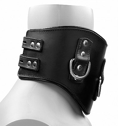 Ouch Leather Padded Posture Collar
