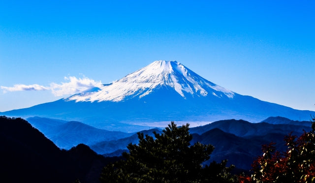 10-hour Fuji Cemetery Private Car Charter from Tokyo(Selectable Sightseeing provided)