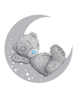 Load image into Gallery viewer, teddy bear on the moon cake topper, easy cake kit perth
