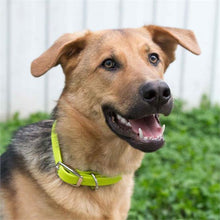 Load image into Gallery viewer, Shedrow K9 Tofino Waterproof Collar - Orbit Yellow