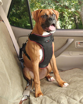 Solvit Pet Vehicle Safety Harness 45 to 85 lbs. Large