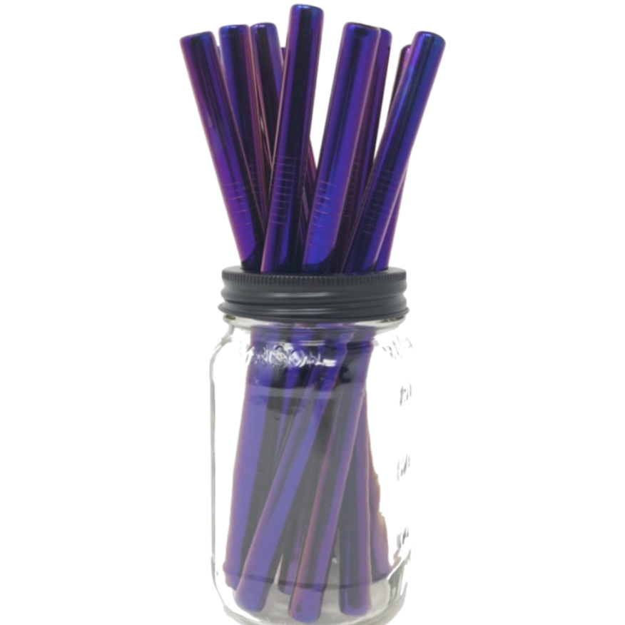 Two Smoothie Straws - Purple Stainless Steel Straws