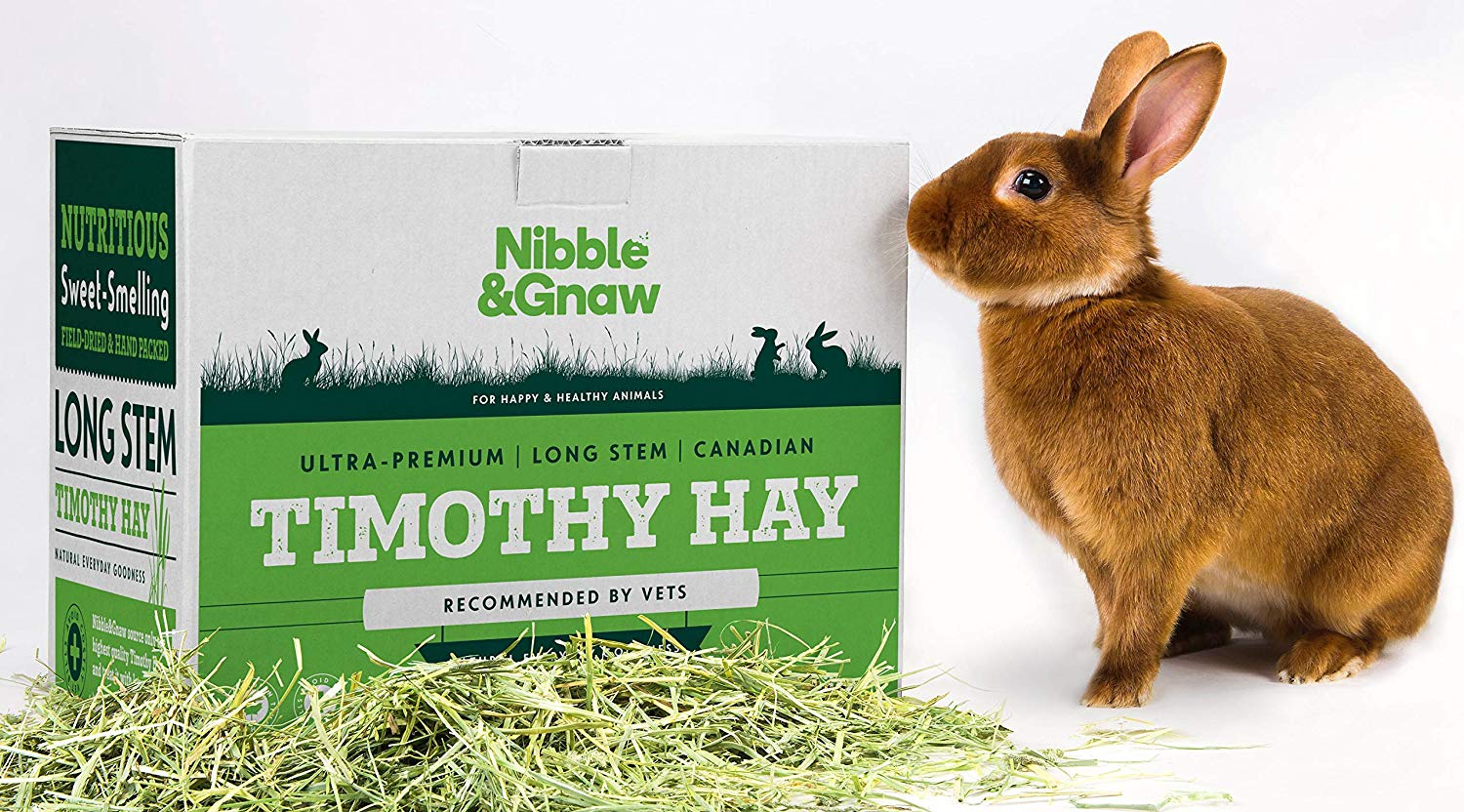 Second Cut Timothy Hay – Ultra Premium Canadian Hay for Rabbits and Guinea Pigs
