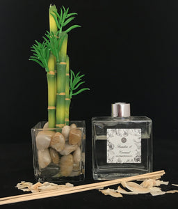 Bamboo & Coconut Reed Diffuser