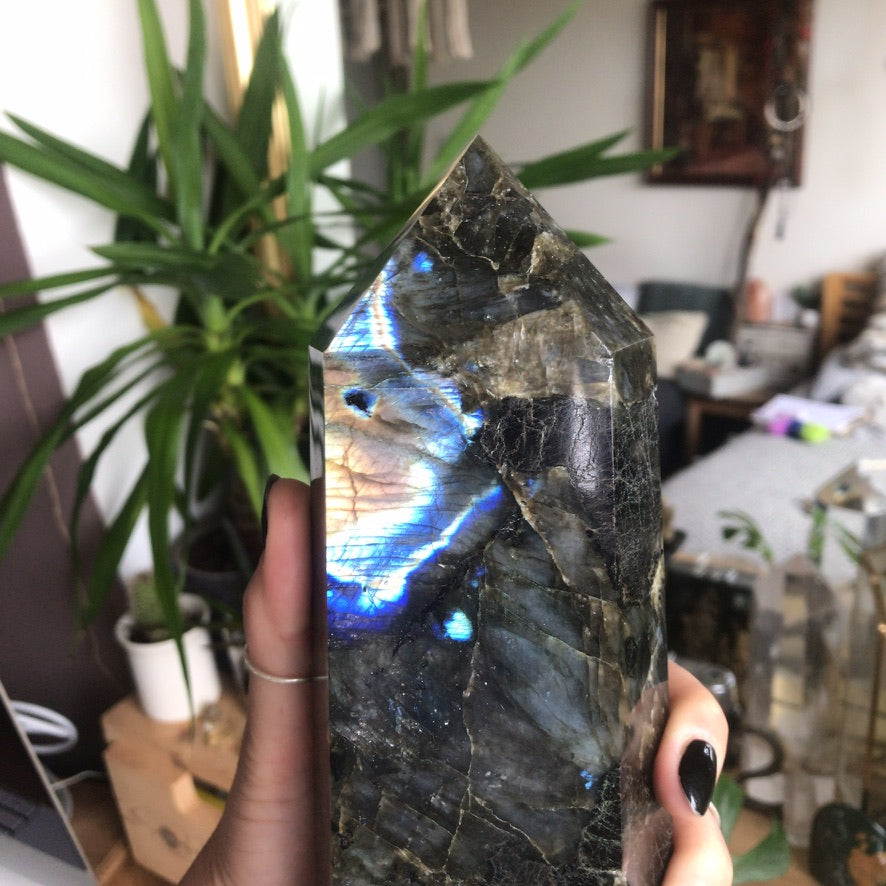 Crystal Point ⟁ Labradorite • Unique Piece