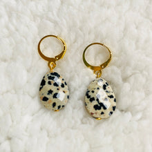 Load image into Gallery viewer, Faceted Dalmatian Jasper ❥ Drop Earrings