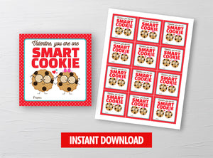 You are one SMART Cookie Valentine's Day Card, Chocolate Chips Square Gift Tags, School Exchange Ideas, INSTANT DOWNLOAD - TitaTipsPrintables