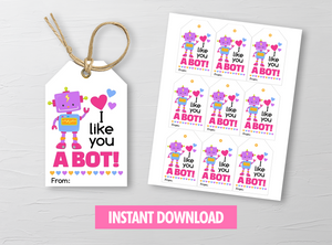 I like you a BOT Valentine's Day Card, Robot Girl Gift Tags, School Exchange Ideas, INSTANT DOWNLOAD - TitaTipsPrintables