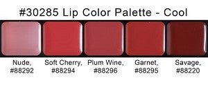 Graftobian - HD Lip Color Palette - Cool Shades