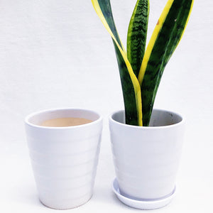 MEDIUM WHITE CERAMIC POT